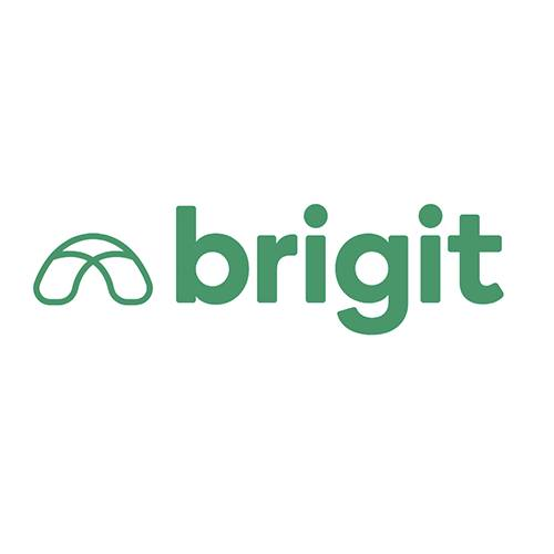 Cash Advance Apps - Brigit Review